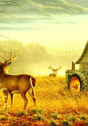 27315220-farm-wallpapers